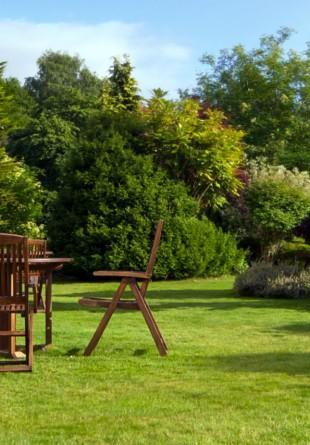 Vacanţa din grădină
