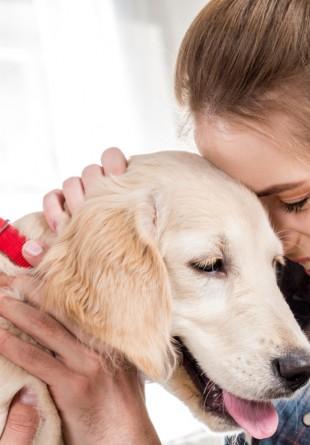 5 lucruri simple care îl fac pe cățelul tău fericit