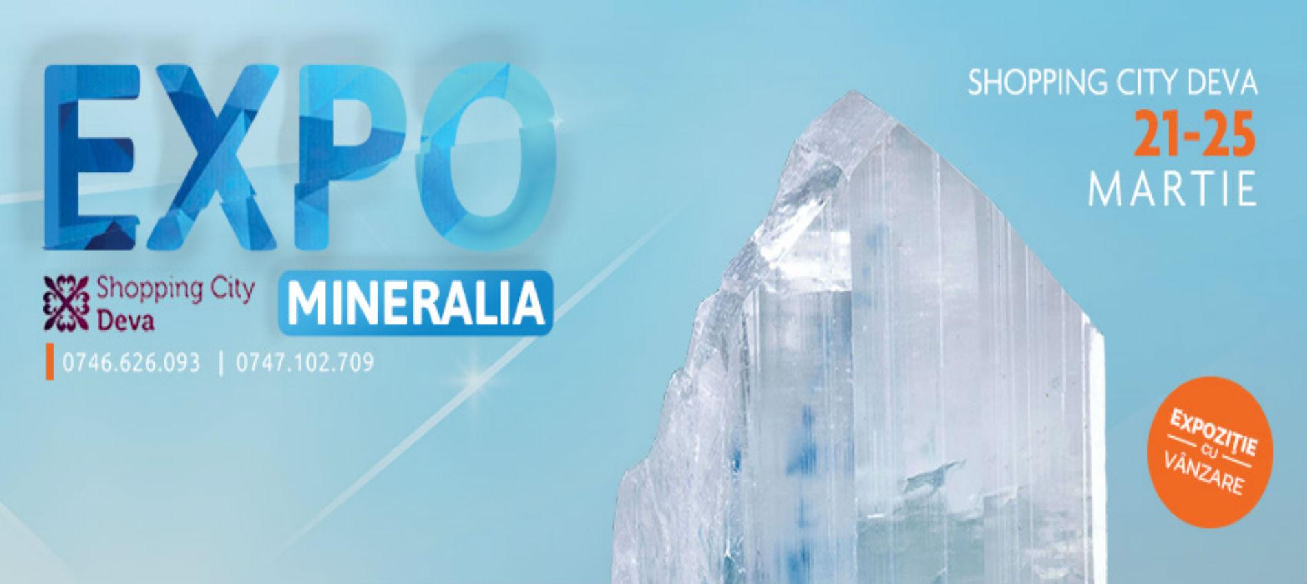 Expo Mineralia vine la Shopping City Deva